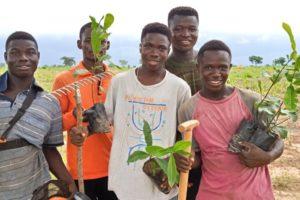 Click-A-Tree-Planting